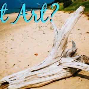 The Art Curator for Kids - Aesthetic Puzzles about Art - Call it Driftwood - Aesthetics Lesson - FB