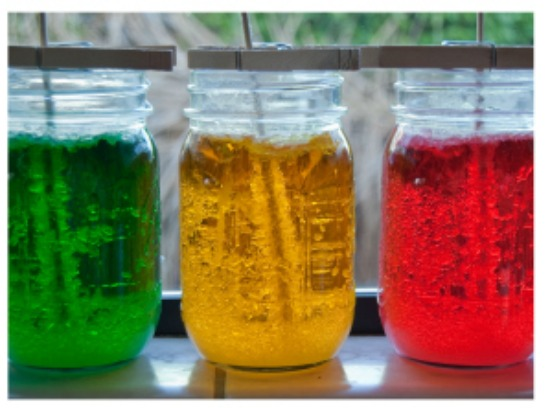 The Art Curator for Kids - Ways to Integrate Art and Science - Sweet Science – The Study Of Seed Crystals Growth (Rock Candy) by Fancy Shanty - Science and Art Activities