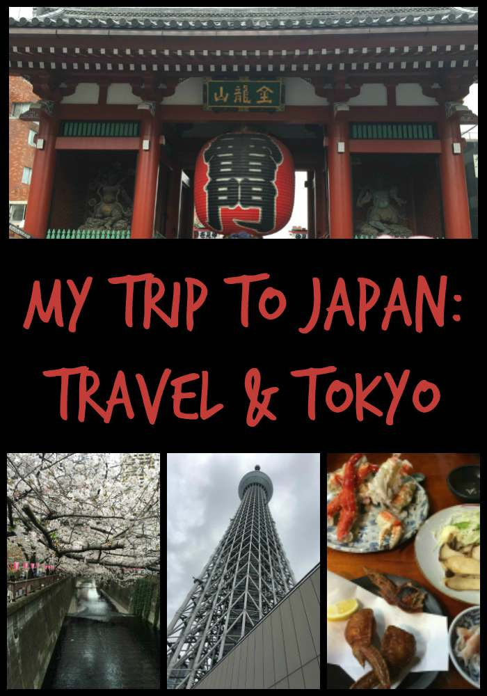 My Trip to Japan: Travel and Tokyo