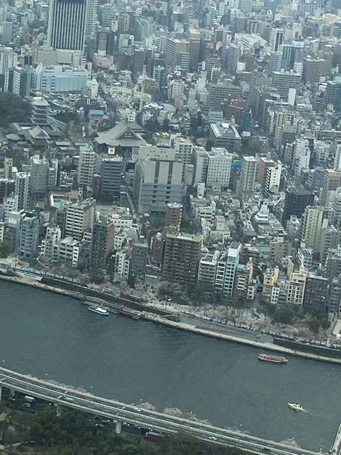 View from the Tokyo Skytree of Sensō-ji