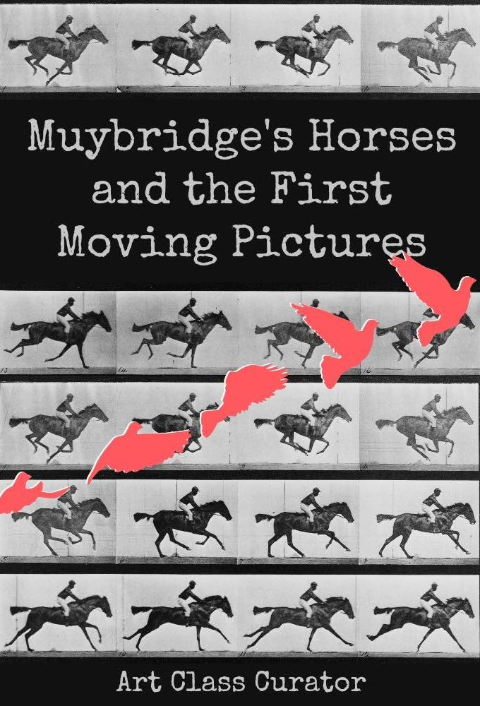 Eadward Muybridge Horse in Motion - Art Class Curator