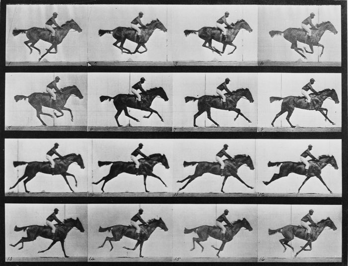Eadweard Muybridge, Horse in Motion, 1878