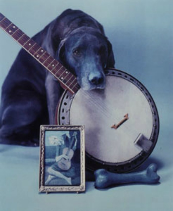 Dogs in Art - William Wegman, Blue Period with Banjo, 1980
